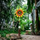 Orange Sunflower Windchime - 100cm Hanging  Garden Sun Catcher Wind Chimes